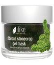 Fibrous Stonecrop Masque 1.7oz by Ilike Organic Skin Care
